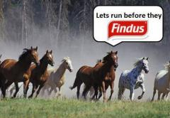 They will Findus
