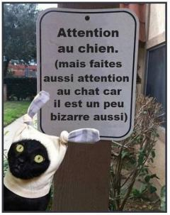 Faite très attention